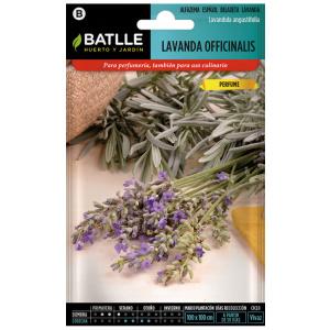 LAVANDA OFFICINALIS Lavandula angustifolia