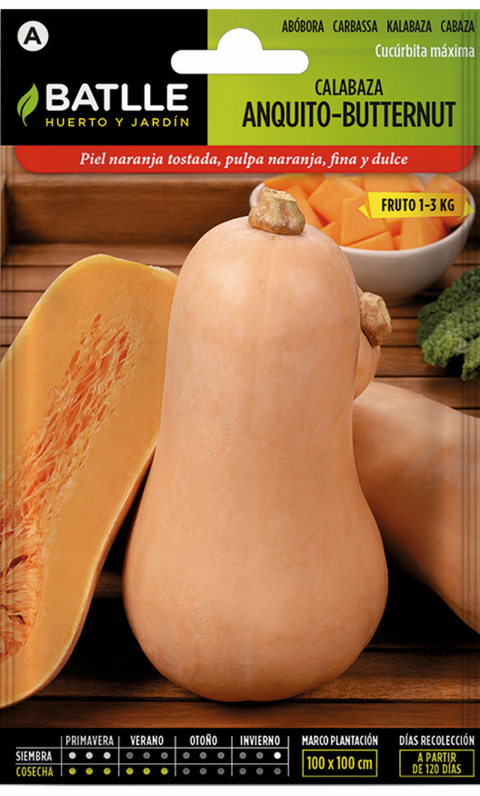CALABAZA BUTTERNUT ANQUITO