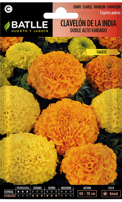 CLAVELON DE LA INDIA DOBLE ALTO VARIADO Tagetes erecta