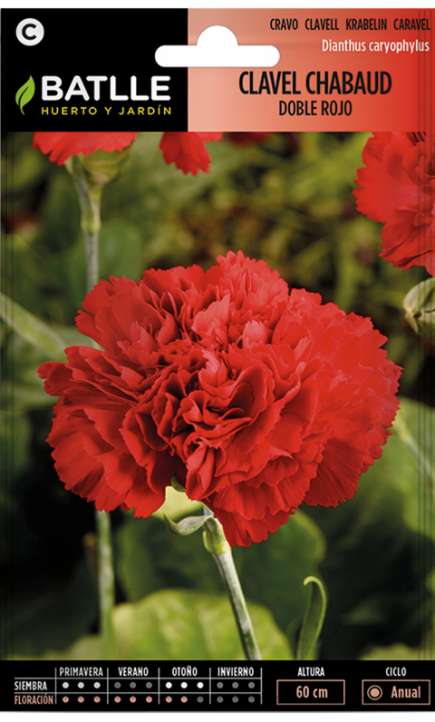 CLAVEL CHABAUD ROJO Dianthus caryophyllus