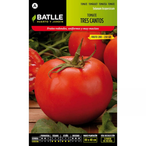 TOMATE TRES CANTOS 100 GR.