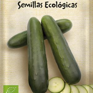 Semillas ecológicas de pepino Marketmore 70
