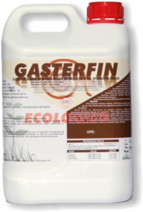GASTERFIN   1 LT.