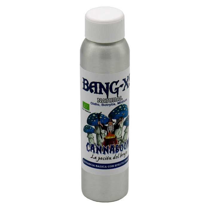 Bang X5