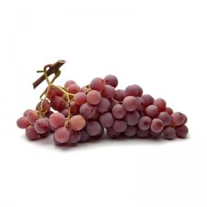 Parra de uva de mesa Red Globe
