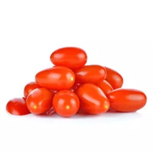 Plantel de tomate injertado cherry pereta rojo