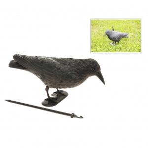 cuervo ahuyentador pajaros edm 2